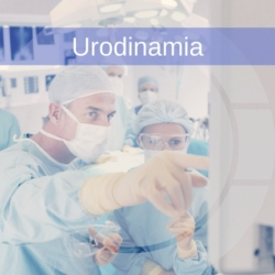 urodinamia-uromed-5